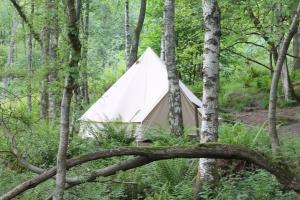 Rowan Tree Tents Comrie Woods